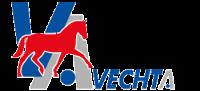 Stadt-Vechta